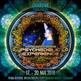 Chabunk Live Set @ Psychedelic Experience Festival 2018