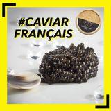 Mixx French Caviar