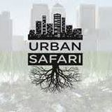 dj farhan - urban safari mix