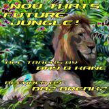 Now Thats Future Jungle!!.....featuring the music of Bay B Kane (blended by DazBreakz)