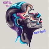 Moonlit Soul   Vol. 8;   Immerse Yourself