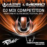 DJ FunkyBearMartin -- Ultra Music Festival Aerial7 DJ Competition 2012