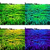 ZacGk // Sleeping Ute // OFFradio 28.4.2013