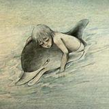 Pirate Radio: Говорят, дельфины говорят