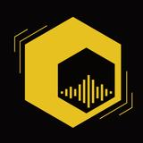 Entrevista: La Miel en tu radio Coordinador del Proyecto Especifico PROAPI  - Horacio Castignani