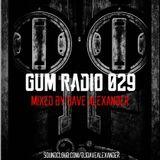 GUM Radio 029