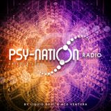 Psy-Nation Radio #010 - incl. Electric Universe Mix [Ace Ventura & Liquid Soul]