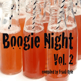 Boogie Night Vol. 2