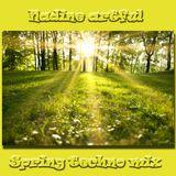 Nadine's spring techno mix
