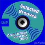 Selected Grooves (Drum & Bass Vinyl Mix)