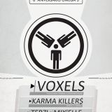 Voxels - Omega 3 Exclusive Mix