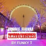 Jungle Flavaz Xmass Xclusive - Funky T