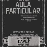 AULA PARTICULAR EPISODIO 13 - CAPILE (WATER RATS)