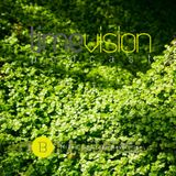 Time Vision 13 by Green Revolution