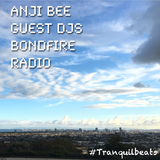 Chillcast Guest DJ for Tranquil Beats on Bondfire Radio (Part 5-5)