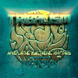 TRIBALISM - Afro-Latino House Musik
