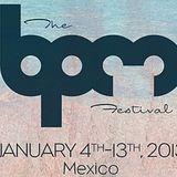 Josh Wink @ Kool Beach - BPM Festival (06.01.2013)