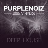 0408 Deep House DJ Purplenoiz