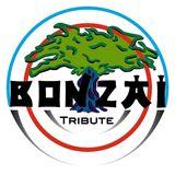 Bonzai Tribute