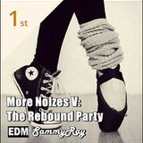More Noizes V: The Rebound Party