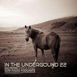 EDM Radio Podcasts - In The Underground 22