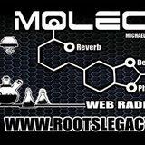 Dub Molecule - Rootslegacy.fr - Dubplate - Dubwise 2.03.2015