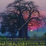 Naturalizum