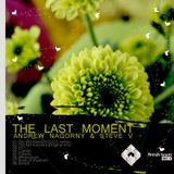 Steve V & Andrew Nagorny - The Last Moment