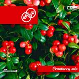 Ilya Nekhoroshev - Cranberry Mix