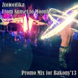 Z(o)(o)lika - Promo Mix for Bakony'13 (From Sunset to Moonlight)