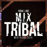 MIX TRIBAL 2K14 - YORDAN C. ARIAS