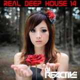 Real Deep House Volume 14 (Mixed by Dj Reactive)
