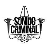 Sonido Criminal 116 JUNGLE BELLS 2013