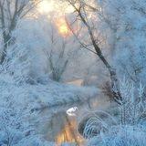 Koylovka: Cold Dawn