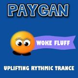 DJ Paygan - Woke Fluff