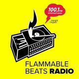 Flammable Beats Radio # 3 ( dj Chagin)