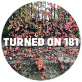 Turned On 181: Palms Trax, DJ Boring, Black Spuma, Ethyène, Rimbaudian, Trikk