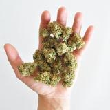 WAB175 - Herb Mix II