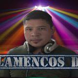FLAMENCOS DJ- PERREO 3