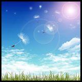 SKOHouse - I SMELL SUMMER MIX