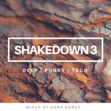 SHAKEDOWN 2019 #3 - mixed by Hans Dames