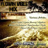 FLOWIN VIBES - KARUKERA RIDDIM MIX