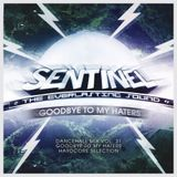 Sentinel Sound - Dancehall Mix Vol 31 Hardcore Selection - Goodbye To My Haters