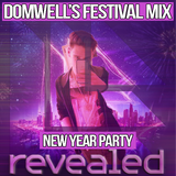 Domwell's New Year Party 2017 - Festival Mix