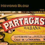 Havana Blow - performance at Estudio Fitacrepe, Festival Bigorna - SP 18/jun/2016