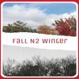FallN2Winter