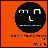 Magnetic NetLabel Podcast 054 - Waje Dj