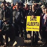 Alberta Wide Rally Against NDP in Hanna : 2016-11-05