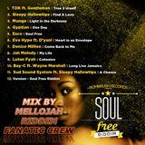 Soul Free Riddim Mix By MELLOJAH RIDDIM FANATIC CREW