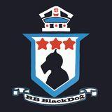 Steampunk Gothic and Sci Fi Show 100817 - DJ BlackDog